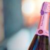 Wine Market: 5 vinos para conocer si NO SABES nada de vino